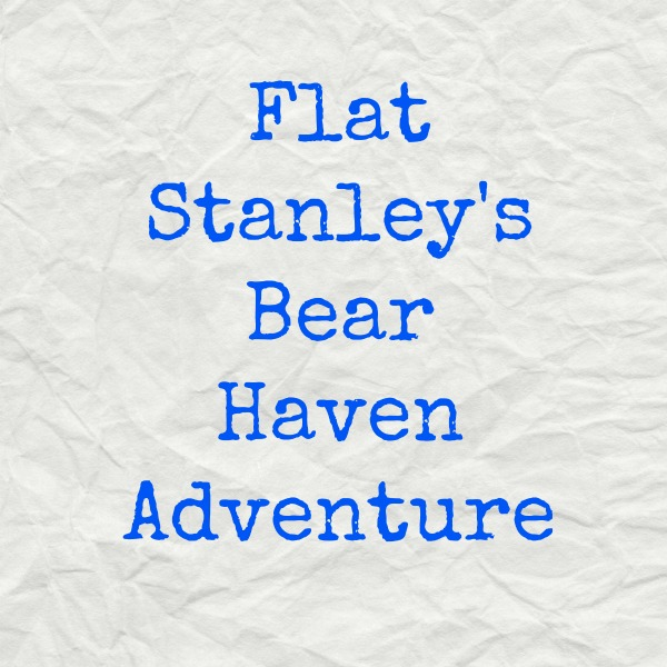 flat stanley cover
